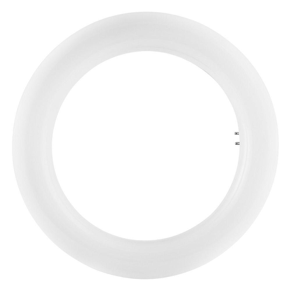 Osram SubstiTUBE T9 Circular EM MAINS G10Q 12W 840 | Blanc Froid - Substitut 22W
