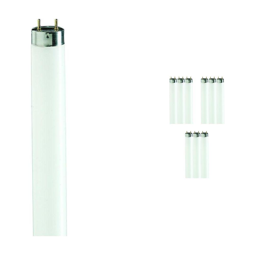 Lot de 10 tubes fluorescents Philips Master TL-D 90 De luxe 36w 965  | 120cm | 6500k Lumière du jour