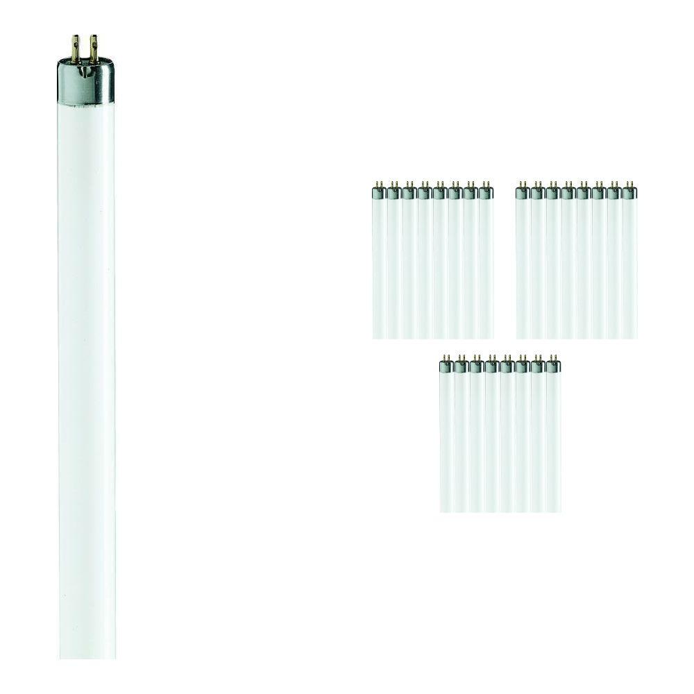 Lot 25x Philips TL Mini 6W 840 Super 80 (MASTER)   21cm - Blanc Froid