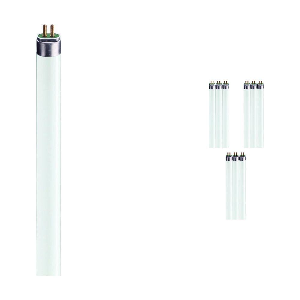 Lot 10x Philips TL5 HE 28W 865 (MASTER) | 115cm - Lumière du Jour