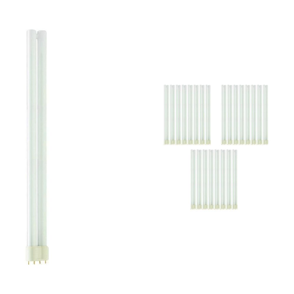 Lot 25x Philips PL-L 36W 840 4P (MASTER) | Blanc Froid - 4-Pins