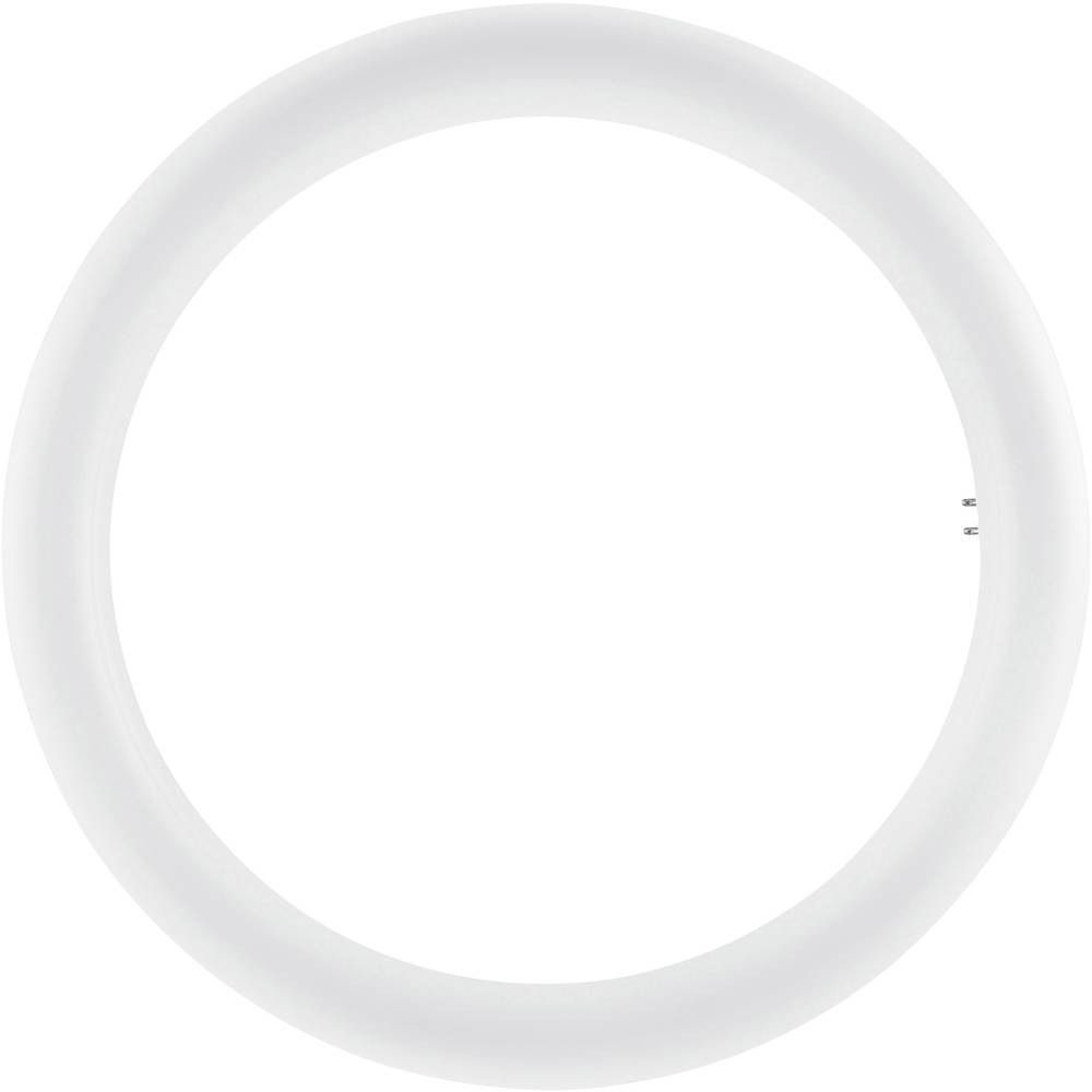 Osram SubstiTUBE T9 Circular EM MAINS G10Q 20W 840   Blanc Froid - Substitut 32W