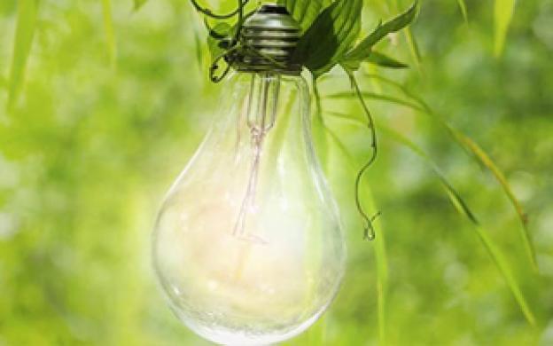 L'étiquette énergétique d'une ampoule