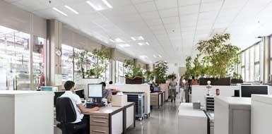 Éclairage des bureaux